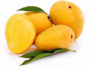 Interesting Information about Mango Tree – BeaBeeInc