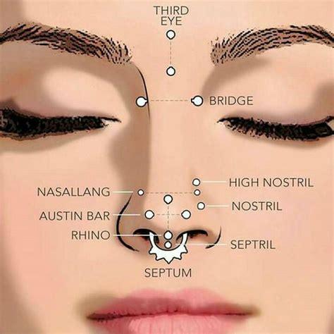 pin  zoltan nagy  piercings piercings facial
