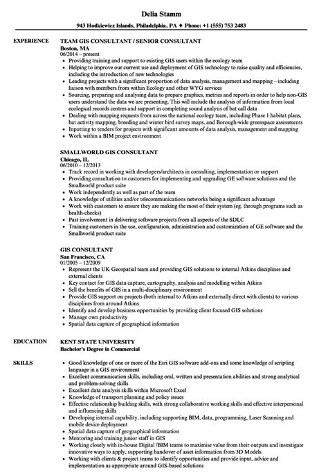 spatial data analyst description resume best