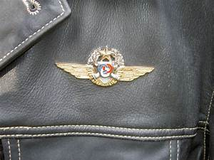Sigle Homme Femme : blouson cuir sigle aviateur v tements homme cuirs homme ~ Melissatoandfro.com Idées de Décoration