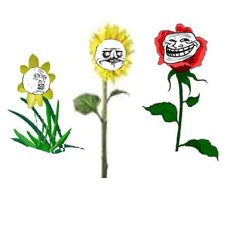 Flowers Meme - meme flowers by sagnussen on deviantart
