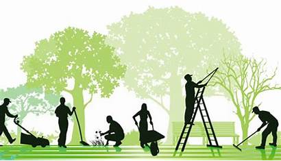 Garden Lawn Maintenance Care Services Mowing Estate