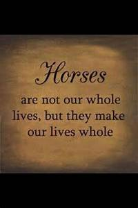 horses make our lives whole- original pinner please excuse ...
