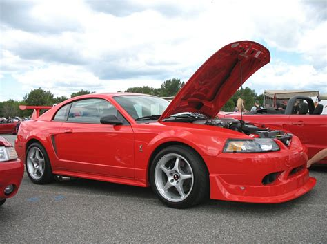 Fileford Mustang Svt Cobra Wikipedia