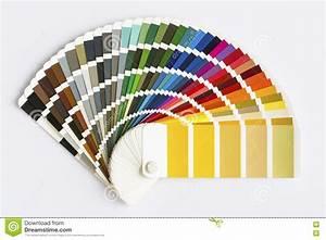 Color Palette Vector Illustration CartoonDealer com