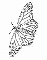 Coloring Pages Butterfly Monarch Printable Butterflies Colour Bestcoloringpagesforkids Butterly Bookmark Flower Mycoloringland Comments sketch template