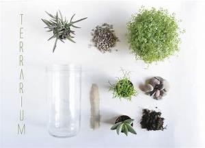Terrarium Plante Deco : terrarium diy mes plantes en bocal de verre little ~ Dode.kayakingforconservation.com Idées de Décoration