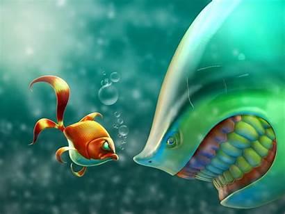 Sealife Fish Underwater Ocean Sea Px Fishes