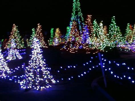 sarasota christmas light tour 2008 holidays pinterest