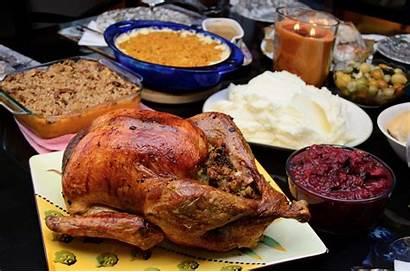 Turkey Thanksgiving Eat Talk Drink Healthy Dinner
