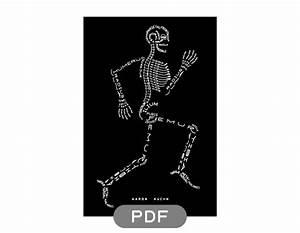 Aaron Kuehn  U2014 Skeleton Typogram