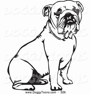 Bulldog Clipart Coloring Page Pencil And In Color