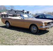 1965 Mustang Convertible Early Production D Code 1964 1/2