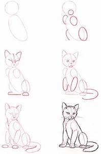 How Do You Draw A Cat | Funny and Cute Cats Gallery