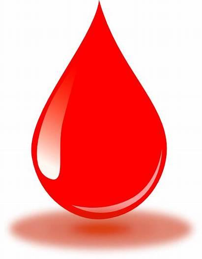 Blood Drop Clip Clipart Vector Realistic Water
