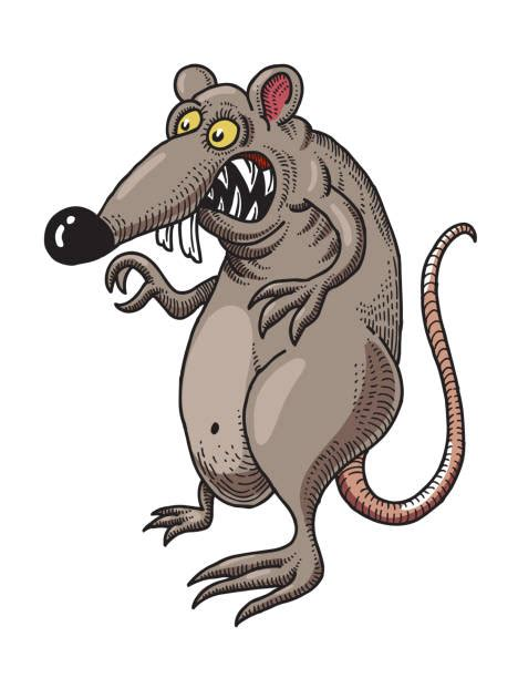 Reading the language and symbols of the cards. Evil Rat Illustrations, Royalty-Free Vector Graphics ...