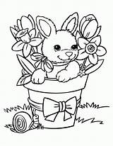 Coloring Bunny Pages Printable Popular sketch template