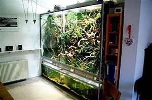 Pflanzen Terrarium Einrichten : bau paludarium seite 2 terrarien aquarien und aquarium einrichten ~ Watch28wear.com Haus und Dekorationen
