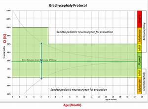 Cephalic Index Chart Using Craniometer