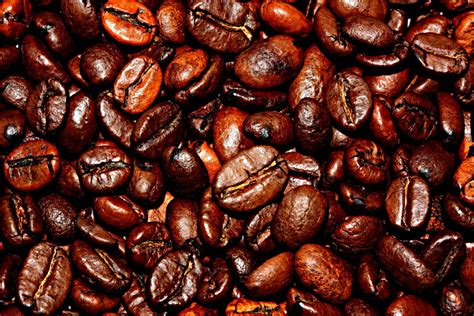 climate change  wipe  coffee watts