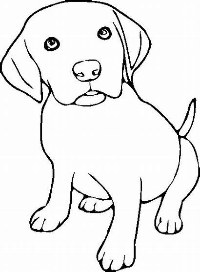 Coloring Pages Puppies Puppy Dog Drawing