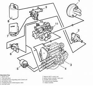 Vacuum Piping Question C20let Nova