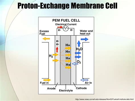 Proton Exchange Membrane Fuel Cell by Ppt Fuel Cells Powerpoint Presentation Id 773313