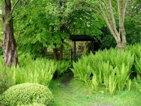 Japanischer Garten Havelland by Amt Neustadt Dosse Japanischer Garten In Bartschendorf