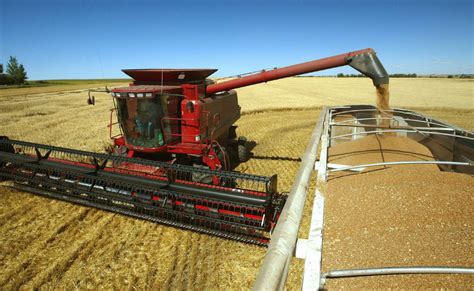 Canadian farmers sitting on grain due to railway logjams