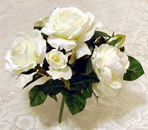 White Rose Flowers - Flower HD Wallpapers, Images ...