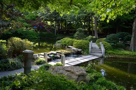 fort worth japanese gardens 1 by capt pausert on deviantart
