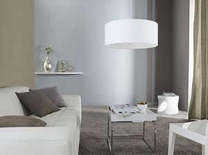 Peinture Blanc Gris : marier les couleurs de peinture dans salon chambre ~ Nature-et-papiers.com Idées de Décoration