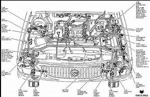 1997 Ford Explorer 5 0 Engine Diagram
