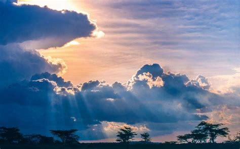 nature landscape sunset clouds trees savannah africa