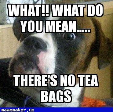 Tea Bag Meme - nice meme in http mememaker us mum when there s no tea bags boxer dog meme creator