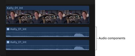 final cut pro  multichannel audio editing examples