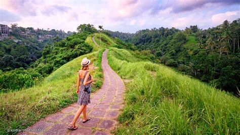 Ubud - Everything You Need to Know About Ubud