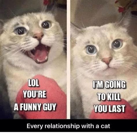 Funny Guy Meme - lol im going youre to kill a funny guy you last every relationship with a cat funny meme on sizzle
