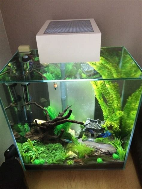 Fluval Edge 46l Fish Tank  In Walsall, West Midlands