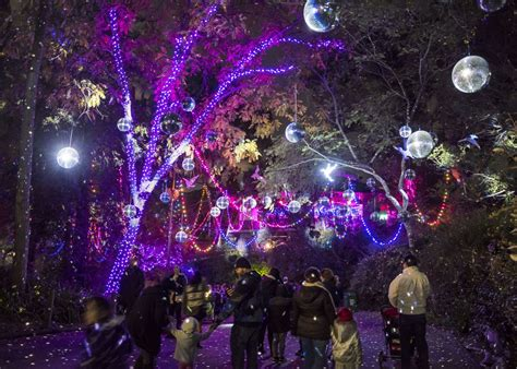 la zoo lights guide to 2017 s l a zoo lights 171 cbs los angeles