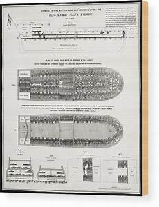 Slave Ship Middle Passage Stowage Diagram 1788 Wood Print