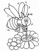 Bee Coloring Honey Bumble Bumblebee Beehive Cartoon Honeycomb Sucking Straw Using Printable Drawing Bumblebees Getcolorings Getdrawings sketch template