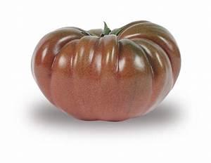 Tomate Noir De Crimée : tomate noire de crim e ~ Dailycaller-alerts.com Idées de Décoration