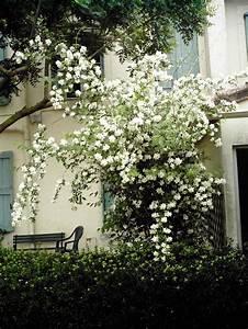 Maison De Retraite Carcassonne : ehpad maison de retraite des oliviers carcassonne 11000 ~ Dailycaller-alerts.com Idées de Décoration