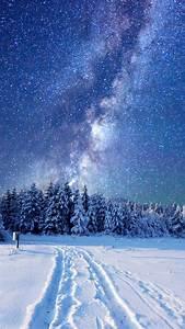 Wallpaper, Forest, Snow, Winter, Sky, Stars, Night, 5k, Nature, 17354