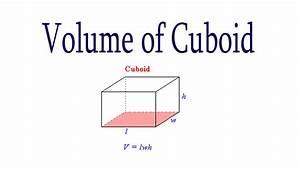 Cbse Maths Volume Of Cuboid  Hindi