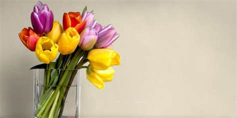tips  bunga  vas segar lebih  merdekacom