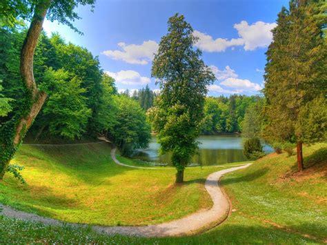 wallpaper pemandangan kebun hijau indah  keren