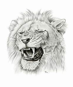 roaring lion by asussman on DeviantArt