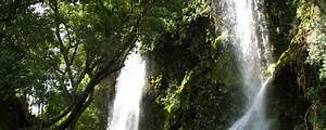 Un Saut D Eau : la cascade saut d 39 eau ha ti ~ Dailycaller-alerts.com Idées de Décoration